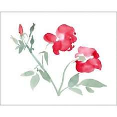 Roses, Aurore DE LA MORINERIE, affiche 4...
