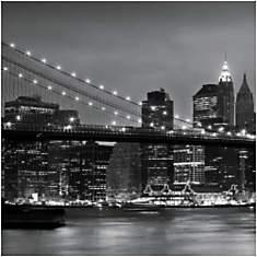 Downtown Manhattan et le pont de Brookly...