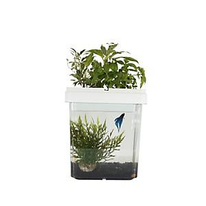 Aquarium potager Ozarium