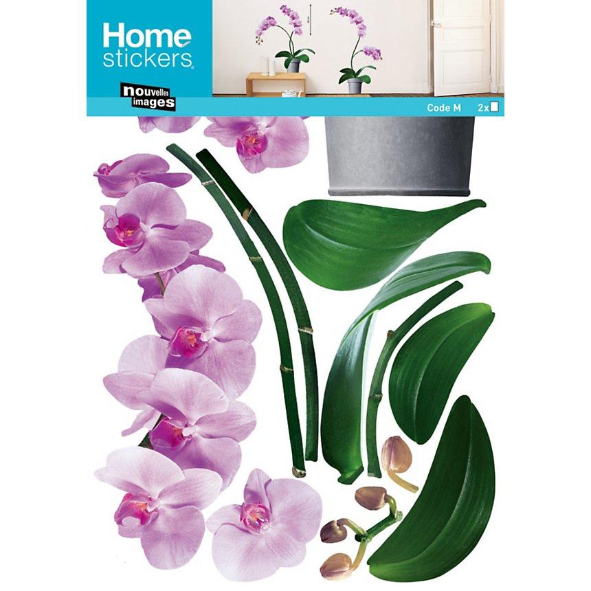 Sticker mural Les orchidées roses (PORCHEZ )