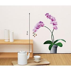 Sticker mural Orchidées rose pâle (PORCHEZ )