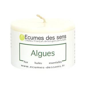 Bougie Parfumée Algues - Votive 100g