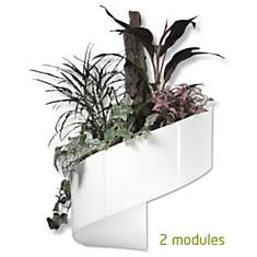 Pot pour plantes mural Design