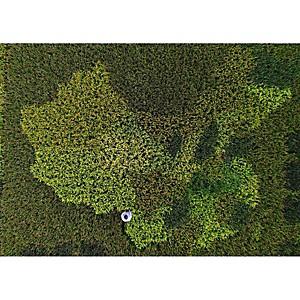 Tirage Photo carte de Chine