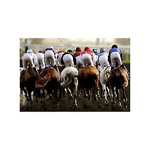Tirage Photo course de galop à Dubaï