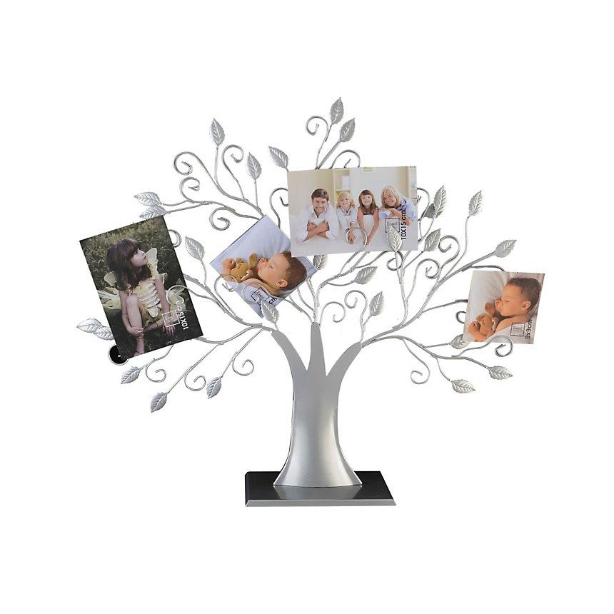 Porte photos arbre éventail