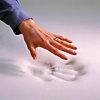 Surmatelas ergonomique 6 zones REVANCE