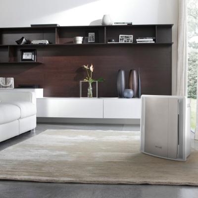 purificateur d 39 air delonghi ac 230. Black Bedroom Furniture Sets. Home Design Ideas