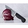 Set de 2 couteaux ZWILLING gamme Pure   office 10 cm + chef 20 cm