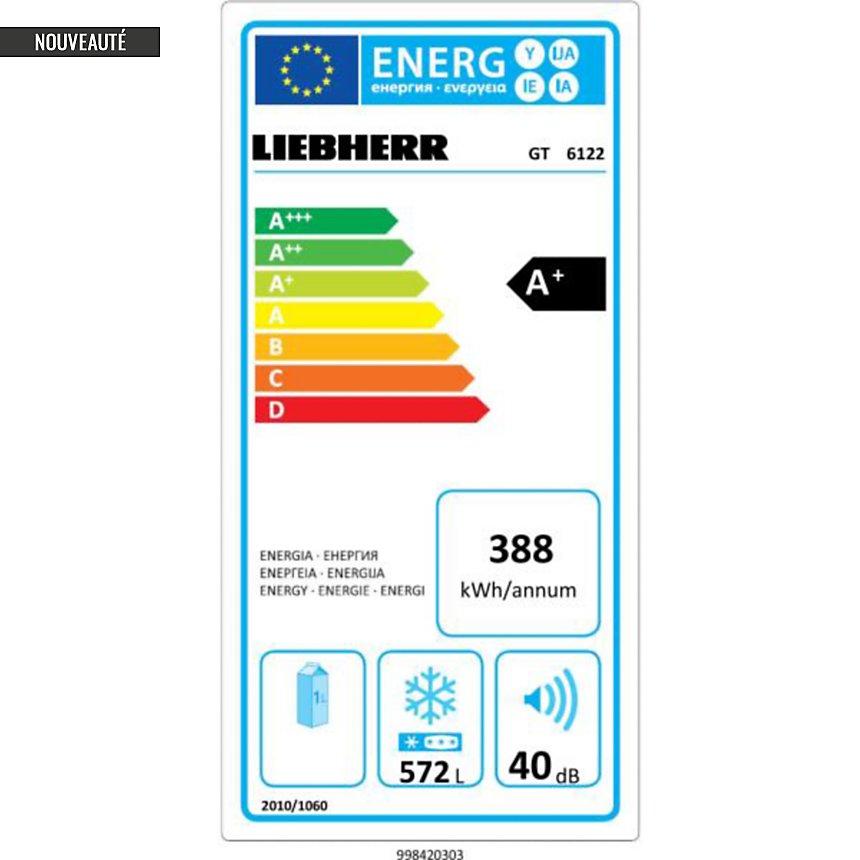 Congélateur coffre garanti 5 ans LIEBHERR GT6122-21